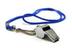 Whistleblowers need Protection