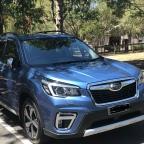 Enter Serhilda Subaru.